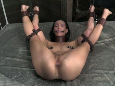 Submissive brunette Wenona gets fixed with leather belts and sucks a dick